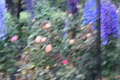 Bucharts gardens Victoria, Canada